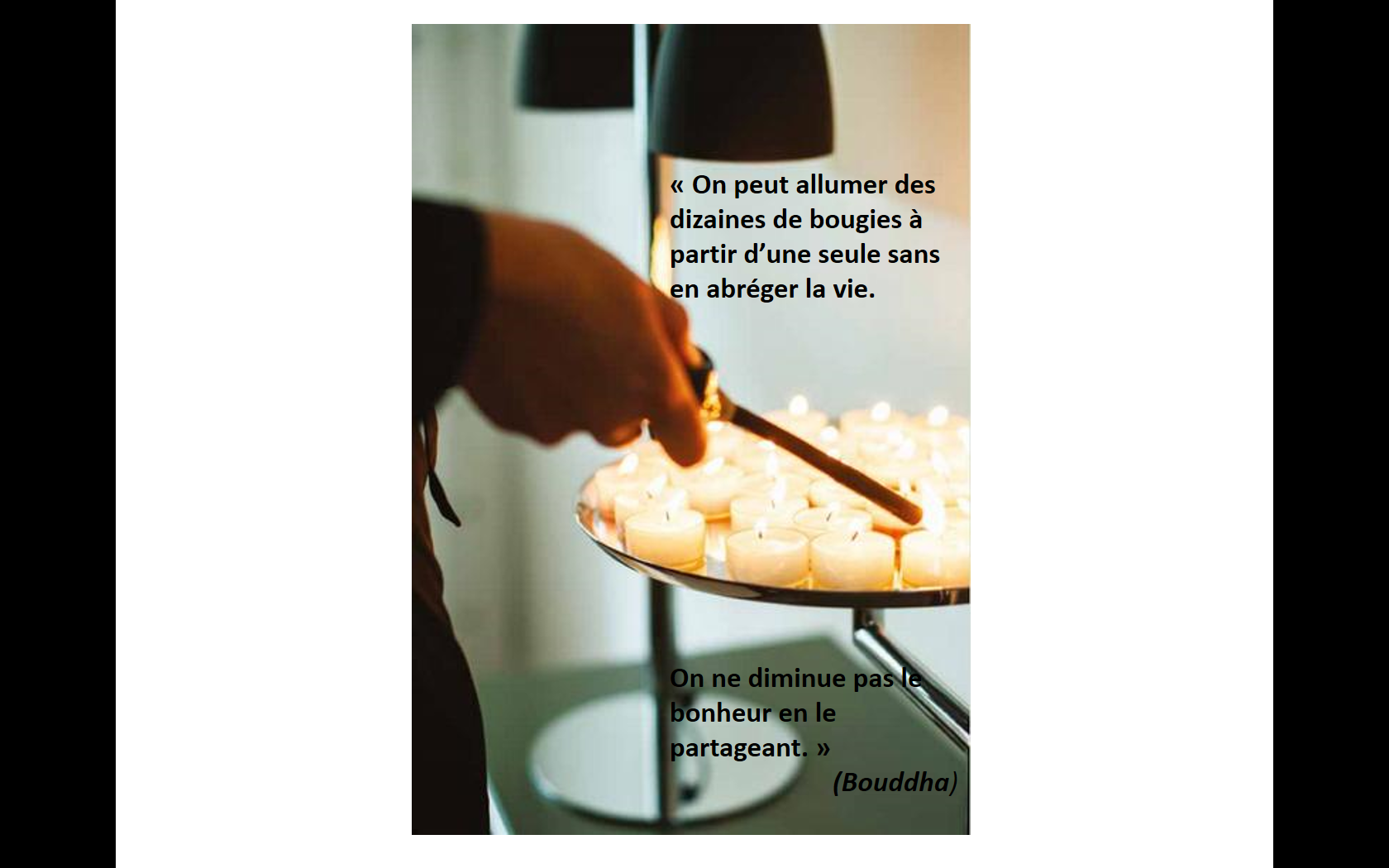 Citation1-Bouddha